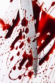 Murder concept - knife with blood on white background, close-up. poster