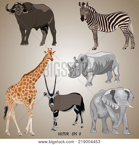 a set of realistic popular African animals - oryx giraffe elephant zebra rhino buffalo isolated. Each object is located on a separate layer.