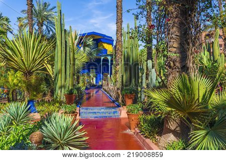 Le Jardin Majorelle, Marrakech, Morocco - November  12, 2017: Amazing tropical garden in Marrakech Morocco.
