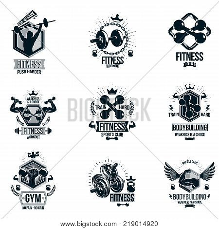 Vector fitness workout theme logotypes and inspiring posters collection created with dumbbells barbells disc weights sport equipment and muscular sportsman body silhouettes.