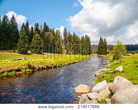 Idyllic landscape with calm mountain river on sunny day. White stones and green meadows and trees. Sumava National Park, Bohemian Forest, Czech Republic.