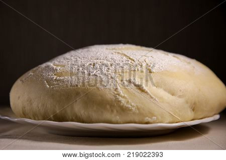 Yeast dough on a plate on a dark background