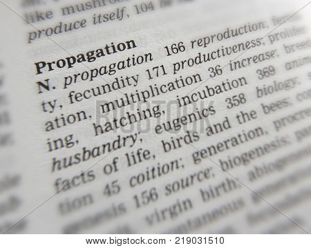 CLECKHEATON, WEST YORKSHIRE, UK: THESAURAS PAGE SHOWING DEFINITION OF WORD PROPAGATION, 30TH MARCH 2005, CLECKHEATON, WEST YORKSHIRE, UK