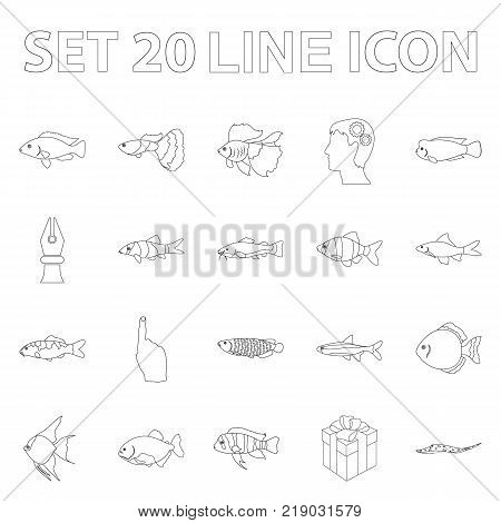 Different types of fish outline icons in set collection for design. Marine and aquarium fish vector symbol stock illustration.