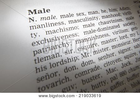 Cleckheaton, West Yorkshire, Uk: Thesaurus Page Showing Definition Of Word Male, 30th March 2005, Cl