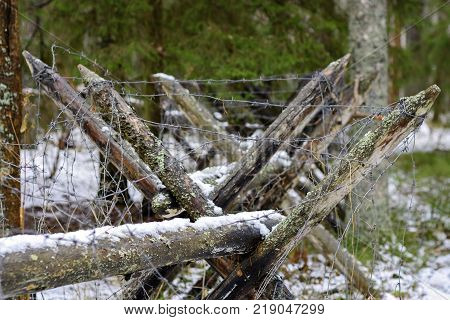 Protective barricade of wooden stakes and coils with barbed wire made of steel.