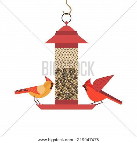Cute Red Northern cardinal bird poster. Comic flat cartoon. Minimalism simplicity design. Winter birds feeding by sunflower seeds in feeder. Template birdwatching card background. Vector illustration poster