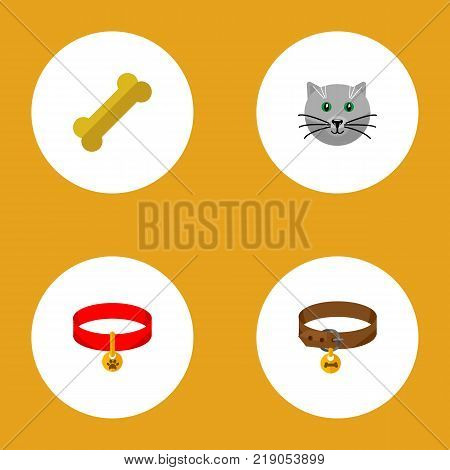 Icon flat pets set of puppy collar, cat necklace, bone and other vector objects. Also includes cat, collar, kitty elements.