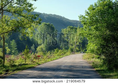 morning country road to Jerma Valley and Canyon, Serbia
