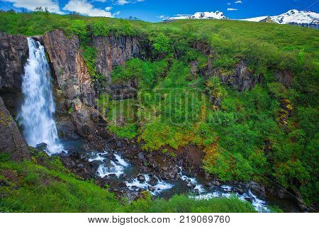 Amazing waterfall at the southside of Iceland near Svartifoss waterfall and Hvannadalshnukur glacier