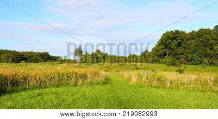 Hiking trail through the prairie at Shabbona Lake State Park Illinois