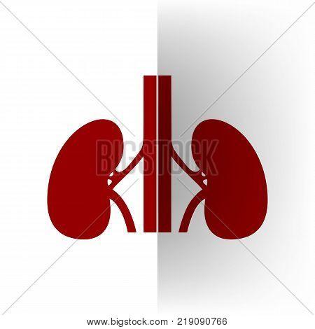 Human anatomy. Kidneys sign. Vector. Bordo icon on white bending paper background.