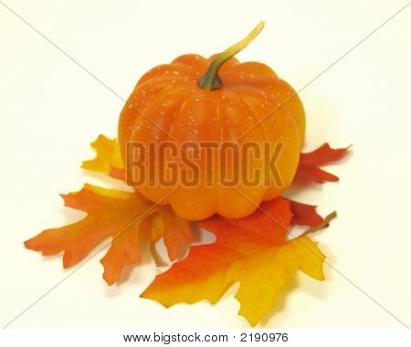 Pumpkin And Fall Leaves