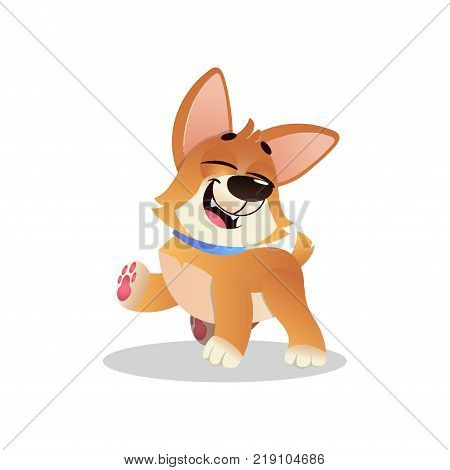 Funny corgi walking with happy muzzle. Cartoon dog character with blue collar. Cute domestic animal. Graphic design element for kids print, pet store or sticker. Isolated flat vector illustration.