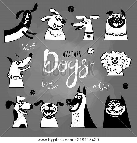 Avatar dogs. Funny lap-dog, happy pug, cheerful mongrels and other breeds. Vector illustration.