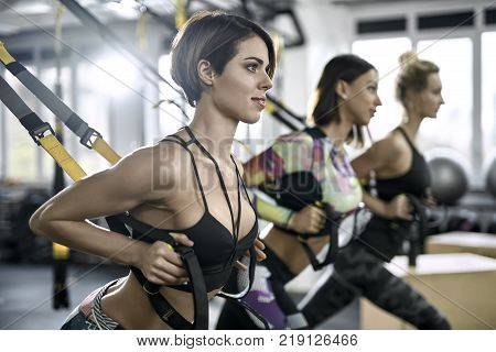 Pretty girls are training with TRX straps in the gym on the windows background. They are wearing the sportswear: multicolored pants with tops and sleeveless. Horizontal.