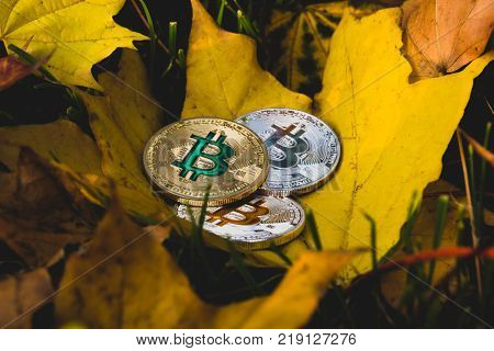 the fall in the price of the digital currency Bitcoins concept