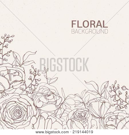 Floral square backdrop with gorgeous blooming rose flowers, leaves and inflorescences growing from bottom edge hand drawn with contour lines on light background. Botanical vector illustration