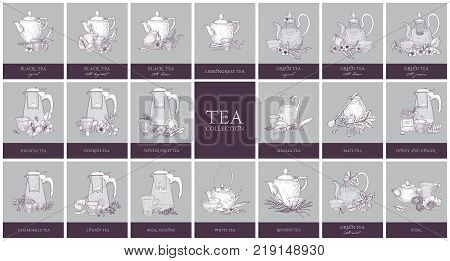 Set of labels or tags with different types of tea - black, green, hibiscus, fruit, milk oolong. Bundle of hand drawn aromatic beverages, teapots, glass cups and spices. Monochrome vector illustration