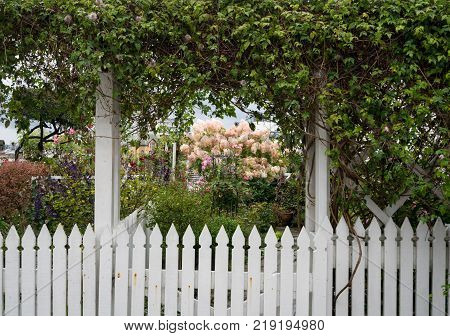 White picket fence around colorful garden in the old town of Stavanger in Norway