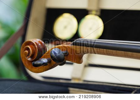 Close up of a violin shallow deep of field