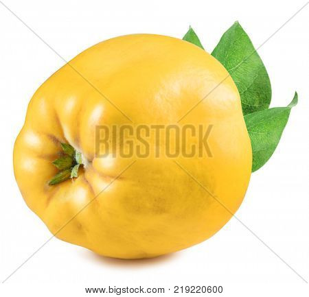 Quince with leaf. File contains clipping path.