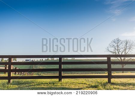 Horse Fence with Blue Sky in Early Summer