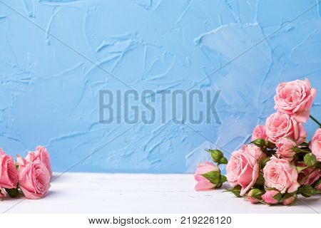 Border from pink roses flowers on light blue textured background. Floral still life. Selective focus. Place for text.