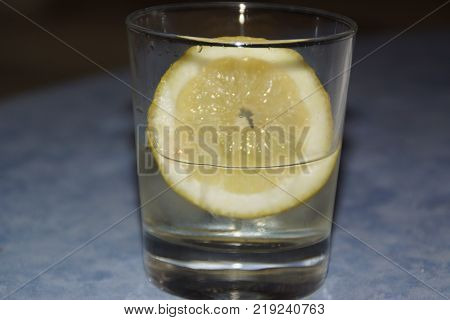 A glass with a slice of lemon and some ice cubes.  The lemon (or yellow lemon) is a citrus fruit, a fruit of the lemon tree, the juice of which has a pH of 2,5. The lemon tree (Citrus silt) is a shrub of 5 10 meters away from high, evergreen, of the famil