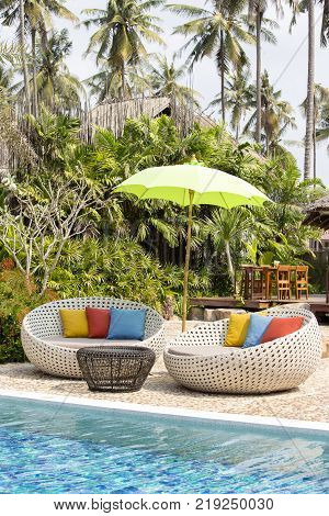 Swimming pool coconuts palm trees two rattan daybeds and umbrella in a tropical garden Thailand