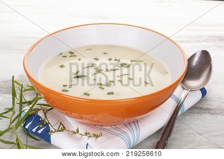 Delicious cream soup in bowl on white wooden rustic table with tarragon herb. Culinary healthy soup eating.