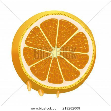 Nice juicy sliced orange, dripping with juice