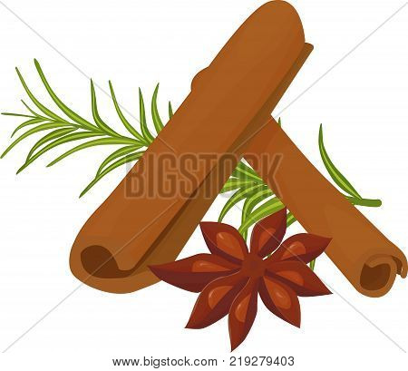 a composition of seasonings and spices. anise star , rosemary and cinnamon isolated on white. cooking herb ingredients