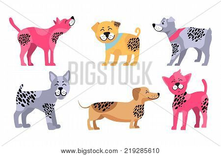 Happy dogs of different breeds icons isolated on white background. Vector illustration with rottweiler, dachshund and other pets in colorful collars