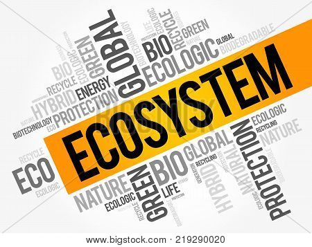 Ecosystem Word Cloud Conceptual Green Ecology Background