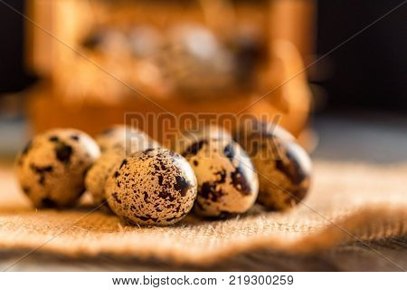 Quail eggs on old brown wooden surface of rustic background, selective focus.