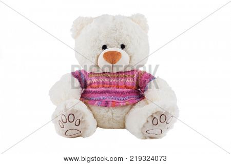 White teddy bear in colorful t-shirt isolated on white