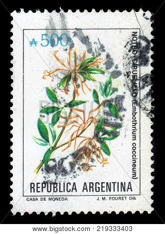 ARGENTINA - CIRCA 1989: a stamp printed in the Argentina shows embothrium coccineum, commonly known as the Chilean firetree, Chilean firebush, Notro, small evergreen tree, series flowers, circa 1989