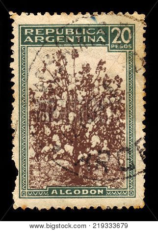 ARGENTINA - CIRCA 1936: a stamp printed in the Argentina shows shrub of cotton, series country products, circa 1936