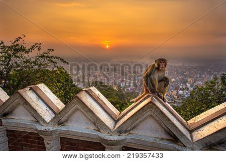 Sunrise above Kathmandu, Nepal, viewed from the Swayambhunath temple. Swayambhunath is also known as the Monkey Temple as there are holy monkeys living in parts of the temple. Hdr processed.