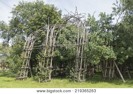 The concept of protection of the weak trees from destruction. Trees covered with a protective wooden structure against a strong wind