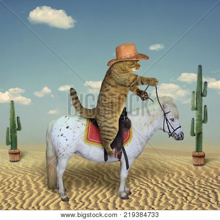 The cat cowboy riding a horse is in the desert among cacti.