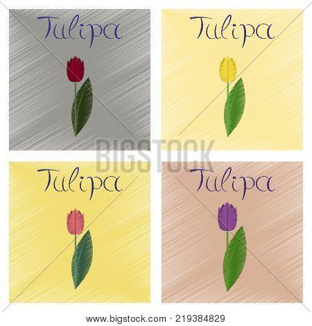 assembly flat shading style Illustrations of plant Tulipa