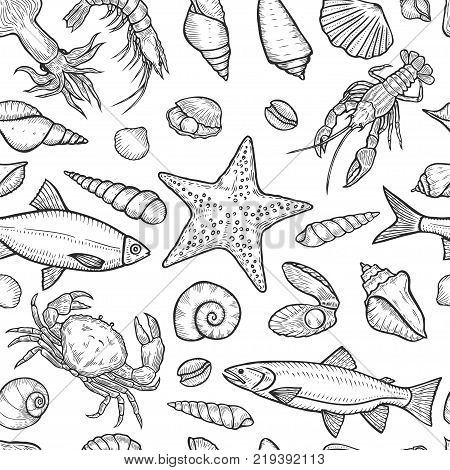 Hand drawn Marine seamless background from sea shells and stars. Nautical pattern with shellfishes isolated on white.
