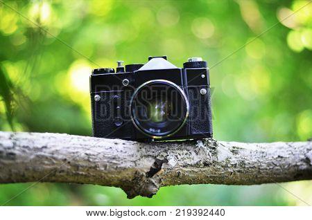 old vintage 35mm film camera standing on branch