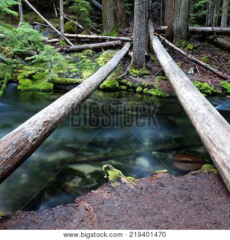 Two logs cross over a beautiful clear creek high up in the forests of Southern Oregon on a summer morning.