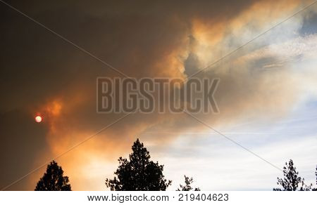 Billowing smoke rises up from an uncontrolled forest fire in national forest land