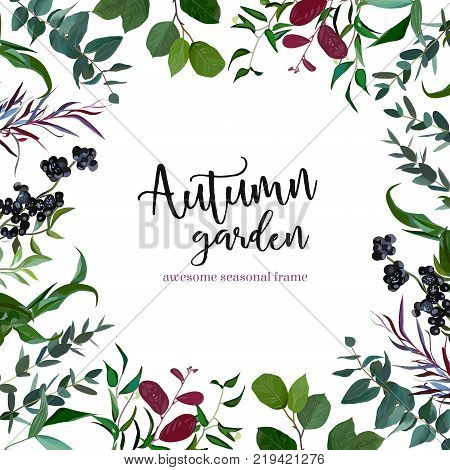 Grenery mix square vector frame. Hand painted plants, branches, leaves, berries on white background. Eucalyptus, salal, parvifolia, agonis. Natural card design. All elements are isolated and editable.