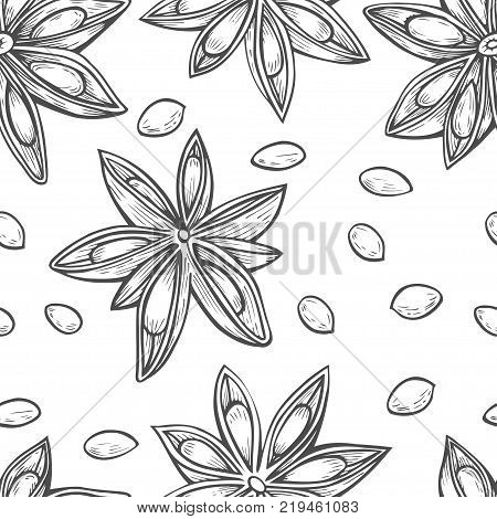 Hand drawn Seamless background of Anise star flower seed plant . Sketch illustration. Spicy herbs. Star anise Doodle design cooking ingredient for food, dessert. Seasoning spice herb.