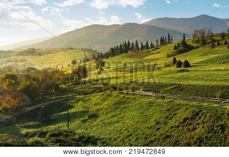 agricultural fields on slopes on foggy morning. beautiful rural scenery in mountainous area